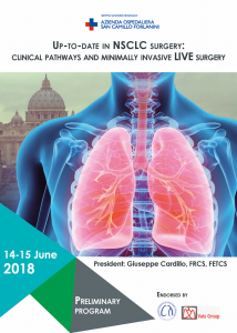 Up-to-Date in NSCLC Surgery
